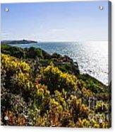 Bass Strait Ocean Landscape In Tasmania Acrylic Print
