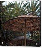 Beautiful Beach With Palm Trees Acrylic Print