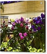 Beautiful Flowers Inside The Changi Airport In Singapore Acrylic Print
