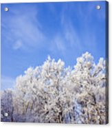 Beautiful Winter Landscape Acrylic Print