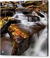 Below Oneida Falls Acrylic Print