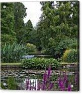 Beth Chatto Gardens Acrylic Print