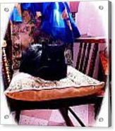 Black Cat With One White Whisker Acrylic Print