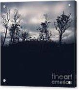 Black Silhouette Trees In Spooky Tasmanian Forest Acrylic Print