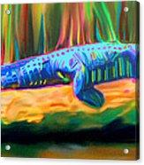 Blue Alligator Acrylic Print