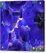 Blue Dream Floral Acrylic Print