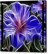 Blue Hibiscus Fractal Acrylic Print