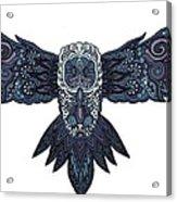 Blue Owl Acrylic Print