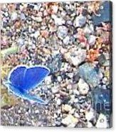Blue Visions Acrylic Print