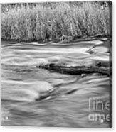 Blur Motion Stream Acrylic Print