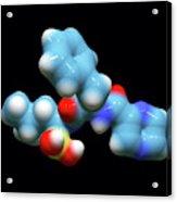 Bortezomib Cancer Drug Molecule Acrylic Print