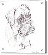 Boxer - Clue Acrylic Print