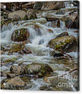 Bridalveil Creek Yosemite Acrylic Print