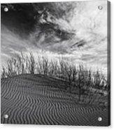 Bruneau Dunes State Park Idaho Acrylic Print