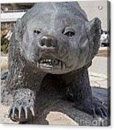 Badger Statue 4 At Uw Madison Acrylic Print