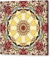 Cecropia Sun 4 Acrylic Print