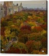 Central Park In Autumn Acrylic Print