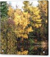 Cezanne Style Digital Painting Beautiful Vibrant Autumn Woodland Reflecions In Calm Lake Waters Acrylic Print