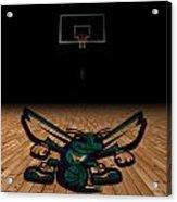 Charlotte Hornets Acrylic Print