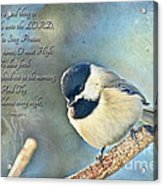 Chickadee With Verse Acrylic Print