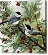 Chickadees And Cherries Acrylic Print