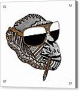 Chimp 2 Acrylic Print