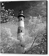 Chincoteague Island Lighthouse Acrylic Print
