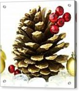 Christmas Acrylic Print by Blink Images