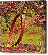 Circle Of Life Acrylic Print