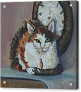Clockwork Cat Acrylic Print