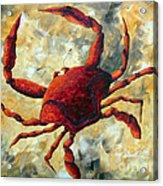 Coastal Crab Decorative Painting Original Art Coastal Luxe Crab By Madart Acrylic Print