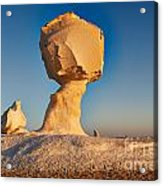 Cock And Mushroom Formation In White Desert Acrylic Print