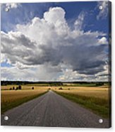 Country Road Acrylic Print by Conny Sjostrom