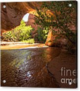 Coyote Natural Bridge - Coyote Gulch - Utah Acrylic Print by Gary Whitton
