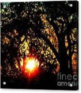 Creole Trail Sunset Acrylic Print
