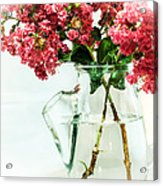 Crepe Myrtle In A Vase Acrylic Print