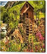 Crystal Mill Wildflowers Acrylic Print
