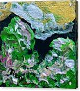 Crystal Reef Acrylic Print