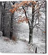 Danish Winter  Acrylic Print