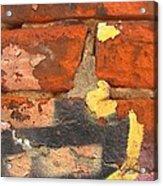 Decay Beauty Acrylic Print
