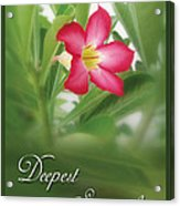 Deepest Sympathies Greeting Card Acrylic Print