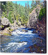 Deer Creek Acrylic Print