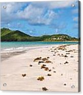 Deserted Beach At Vieux Fort Acrylic Print