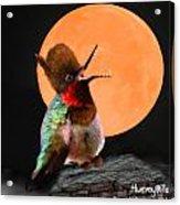 Teen Hummerwolf Acrylic Print