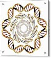 Dna (deoxyribonucleic Acid) Acrylic Print