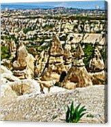 Dog Looking At Fairy Chimneys In Cappadocia-turkey Acrylic Print