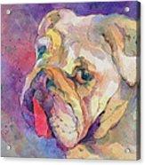 Dog-tired Acrylic Print