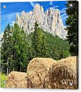 Dolomiti - Alpine Pasture Acrylic Print