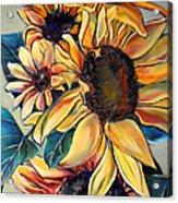 Dooley's Sunflowers Acrylic Print