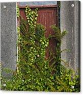 Door Of Old House Acrylic Print